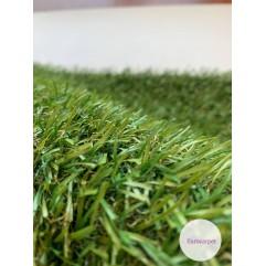 Декоративна трава ROSALIE