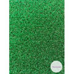 Декоративна трава PETIT DAKAR 10