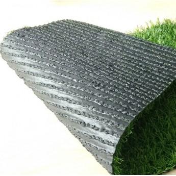 Декоративна трава TROPICANA 10