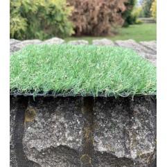 Декоративная трава COCOON